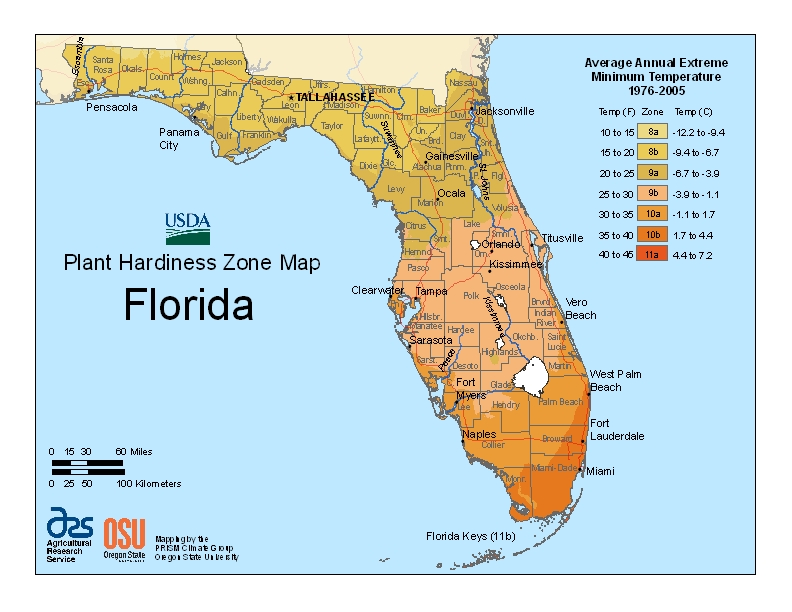 Florida Time Share Sales