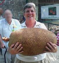 Jackfruit–Bobbi-Spencer