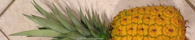 PineappleP80Cu