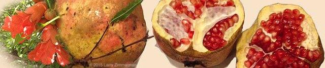 Pomegranate-Hipolito&flowerP60cu